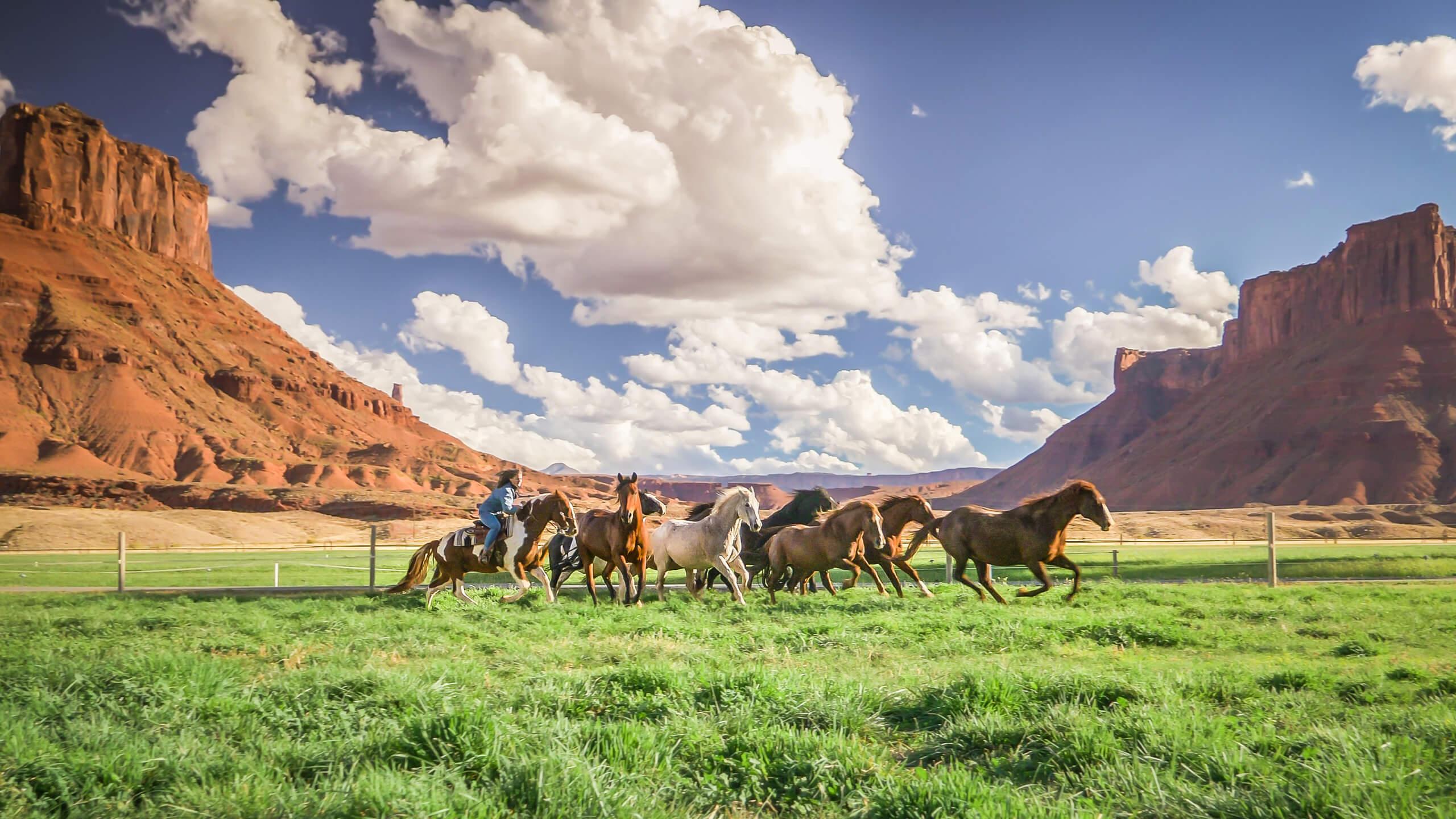 Exp-Horseback-Slide2